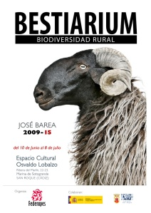 cartel-sotogrande_web